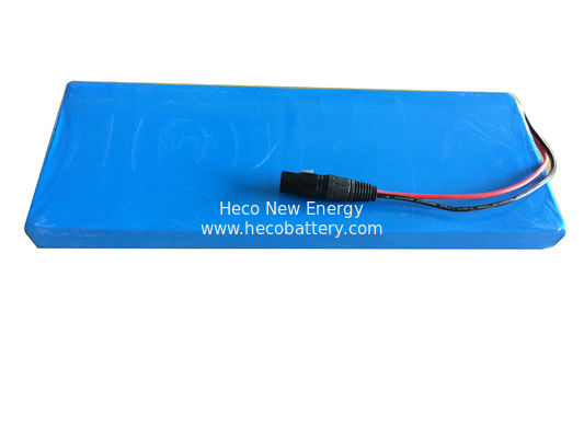 24V 10AH LiFePO4 Battery Pack For Electric Robot in Light Weight and Compact Size