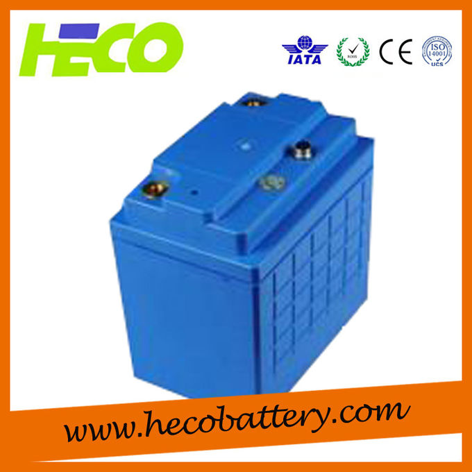 Blue Coating 48V100AH Plastic LiFePO4 Battery Pack / Power Battery